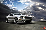 Saleen_Mustang_25th_Anniversary_1.JPG