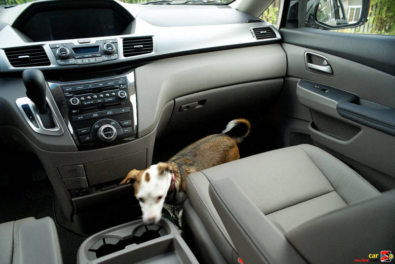 "Leather-Trimmed Seats and 40.9"" of Legroom"